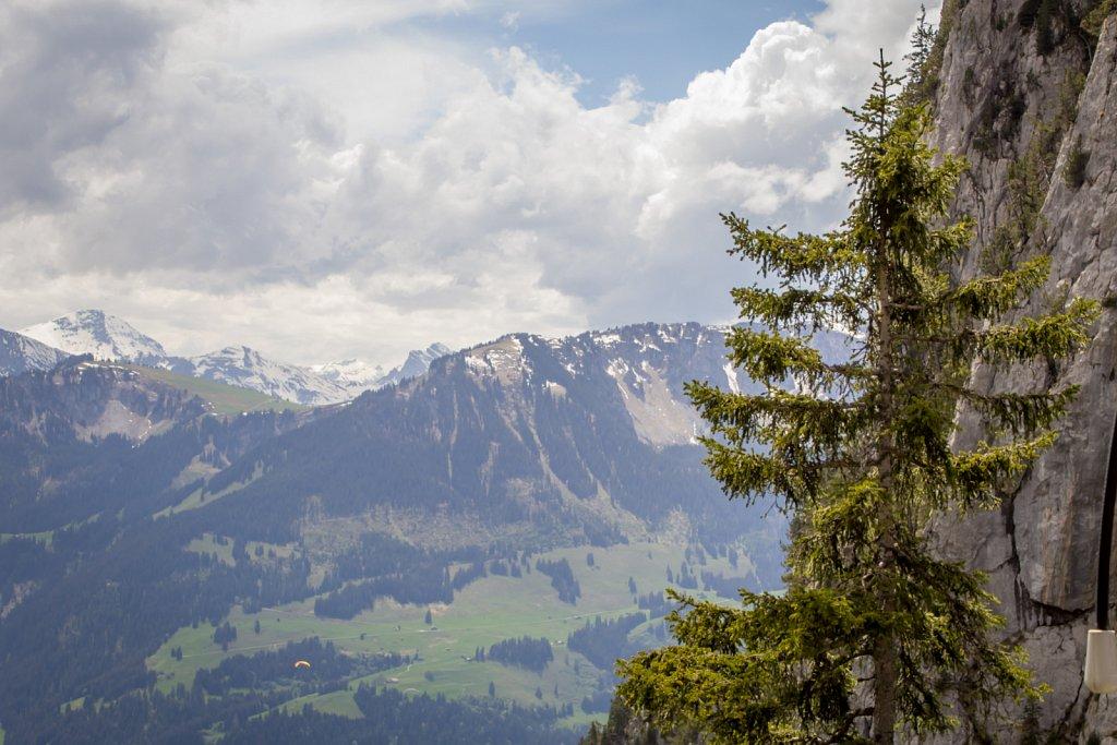 Switzerland-2014-1407.jpg