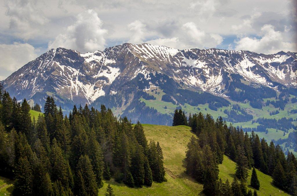 Switzerland-2014-1413.jpg