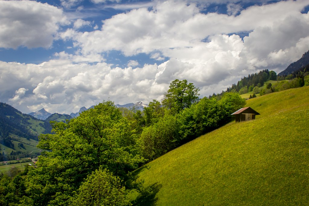 Switzerland-2014-1417.jpg