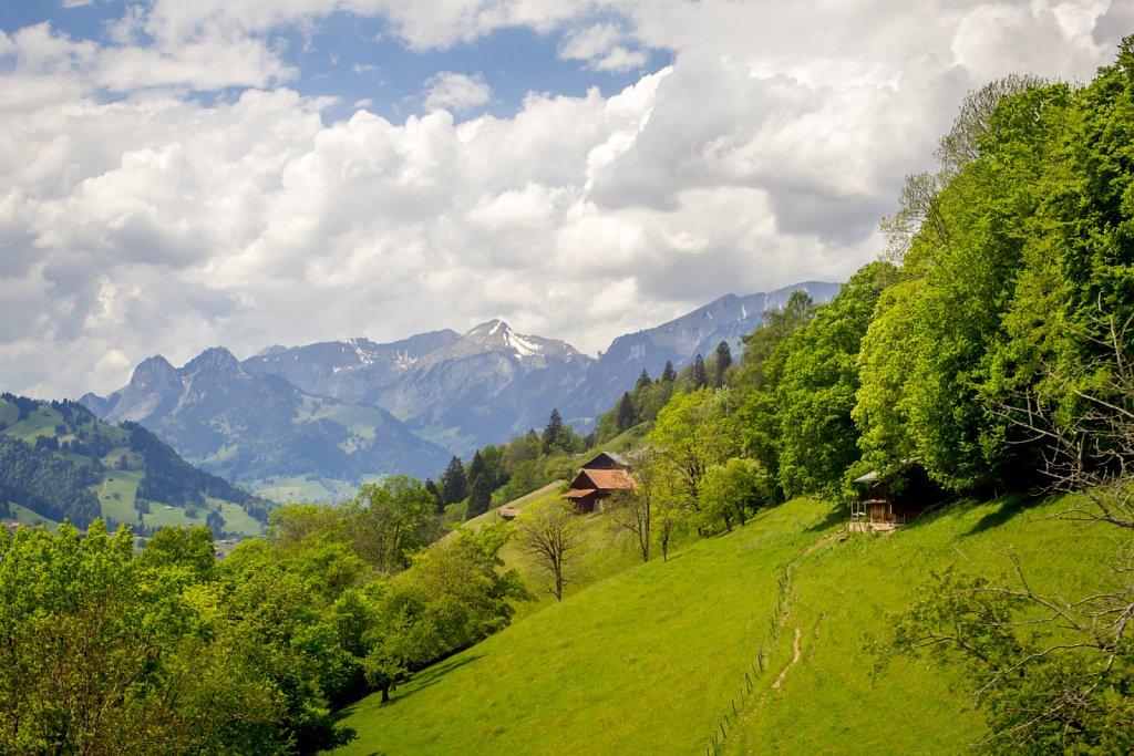 Switzerland-2014-1418.jpg